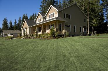 Family home with a large, healthy and green lawn.